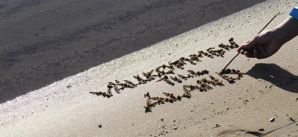 Någon skriver Välkommen till Åland i strandkanten